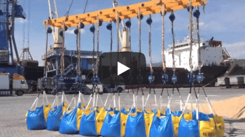 Servimad Port of Málaga - 应用视频